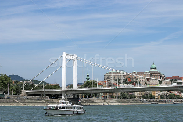 Elisabeth bridge on Danube river Budapest Stock photo © goce