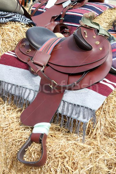 Marrón cuero caballo silla de montar Foto stock © goce