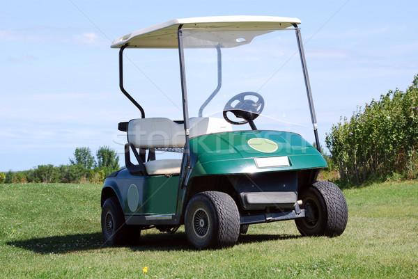 golf buggy Stock photo © goce
