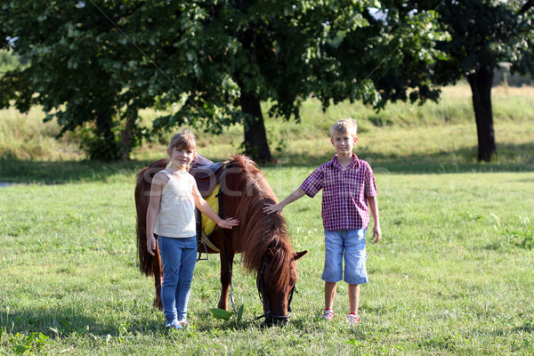 Kislány fiú póni ló lány természet Stock fotó © goce