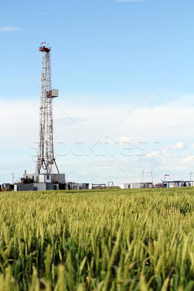Olie booreiland groene technologie veld Stockfoto © goce