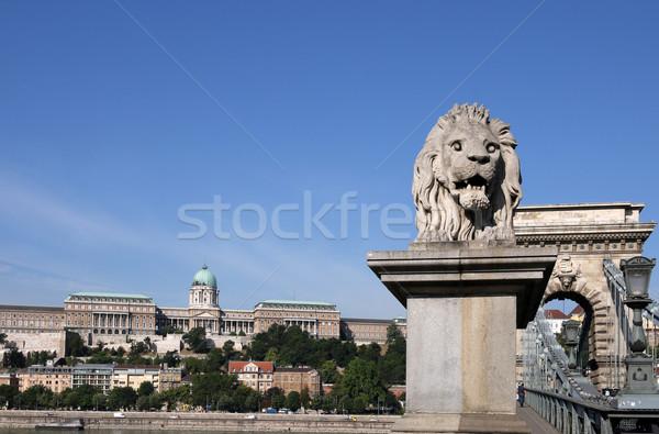 Buda castle and chain bridge lion statue Budapest Stock photo © goce