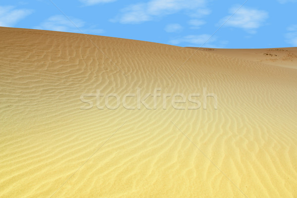 sand dune desert Stock photo © goce