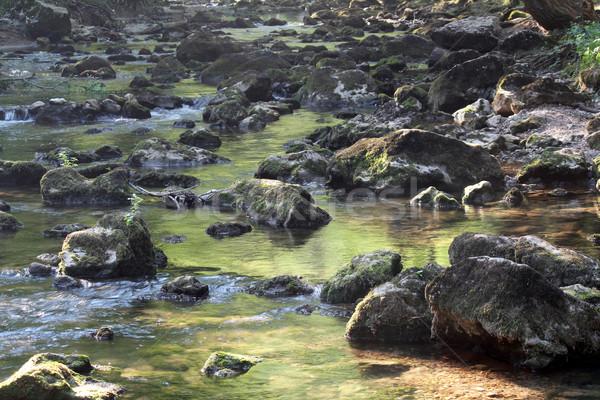 Montanha enseada pedras folha verão rio Foto stock © goce