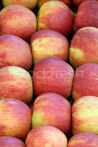 Alma természet étel gyümölcs ősz friss Stock fotó © goce