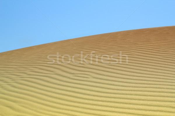 砂丘 砂漠 風景 自然 砂 金 ストックフォト © goce