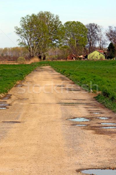 田舎道 水 家 自然 木 緑 ストックフォト © goce