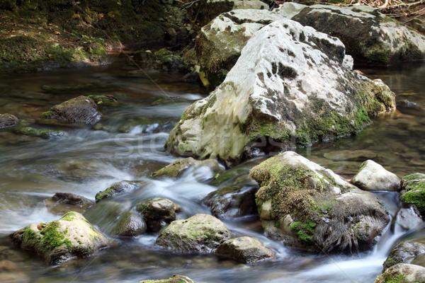 Kayalar dere su bahar sezon yaprak Stok fotoğraf © goce