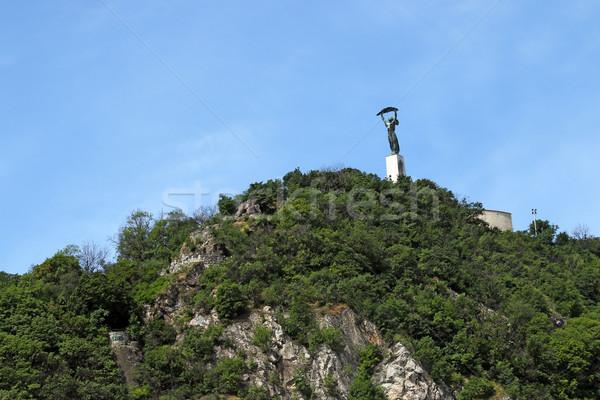 Liberty statue on Gellert hill Budapest Stock photo © goce
