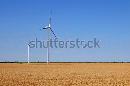 Stock fotó: Szélturbinák · búzamező · tájkép · természet · technológia · mező