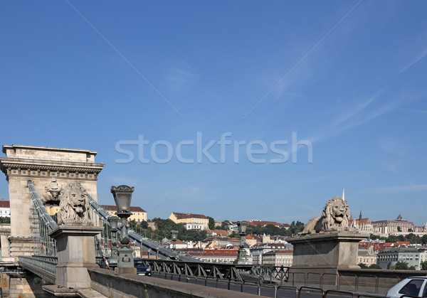 Chain bridge with lion statues Budapest Stock photo © goce