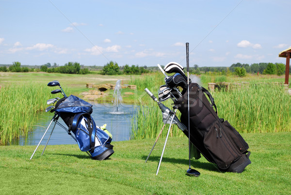 two golf bags Stock photo © goce