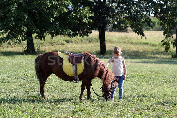 pony horse and little girl  Stock photo © goce