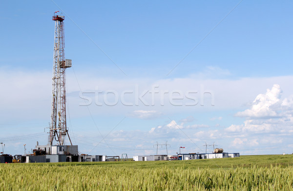 field with oil drilling rig Stock photo © goce