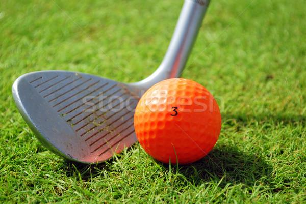 golf-club and orange golf ball Stock photo © goce