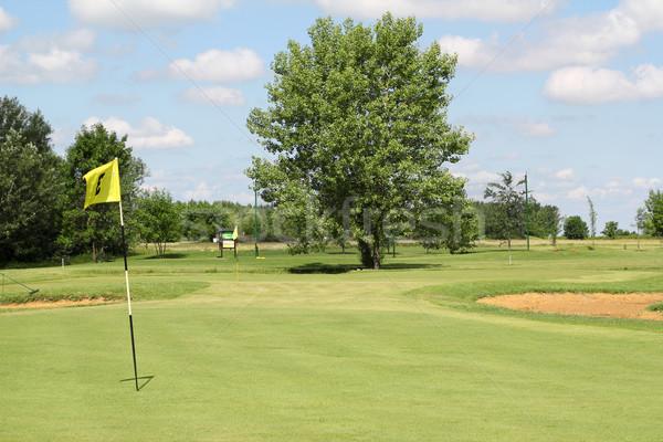 Golf mező nyár tájkép tavasz sport Stock fotó © goce