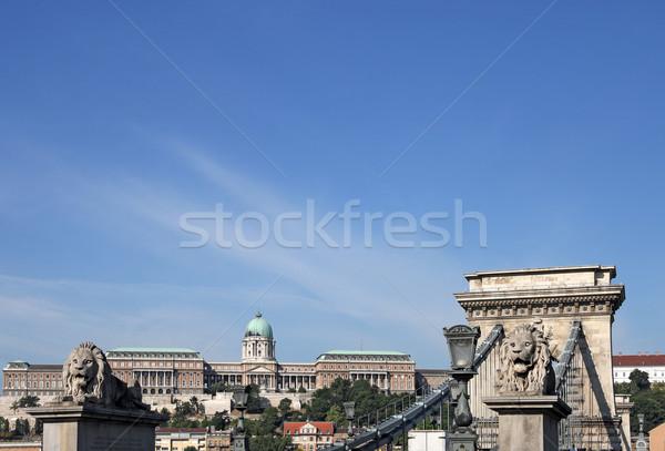 Chain bridge and royal castle Budapest Stock photo © goce