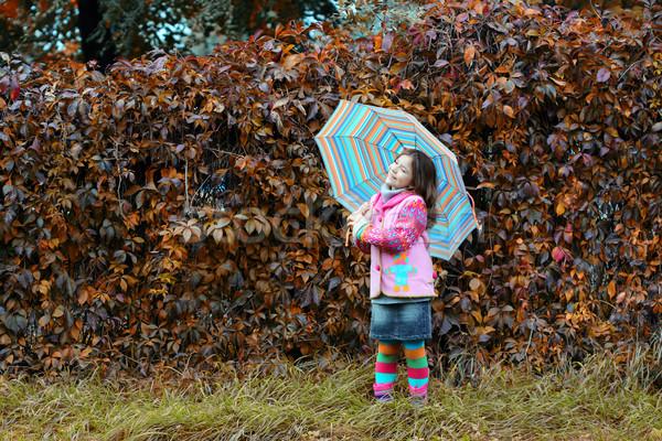 Petite fille parc saison d'automne fille forêt enfant Photo stock © goce