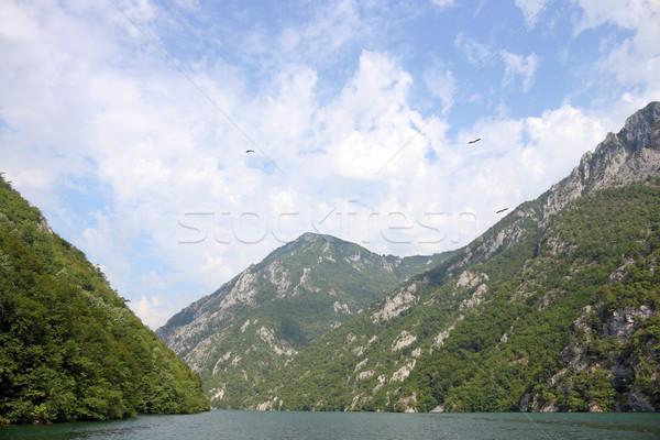 Fiume canyon montagna panorama acqua albero Foto d'archivio © goce