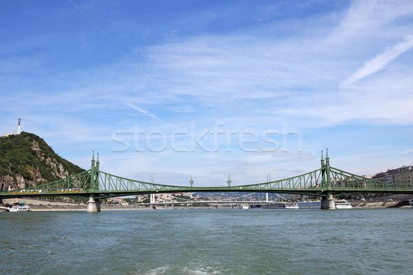 Liberdade ponte danúbio rio Budapeste Hungria Foto stock © goce