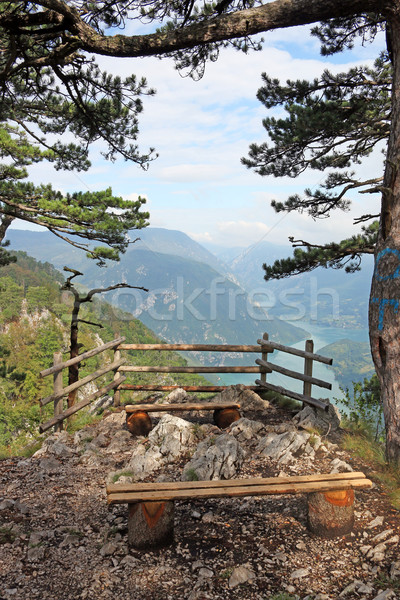famous viewpoint Banjska stena Tara mountain Serbia Stock photo © goce