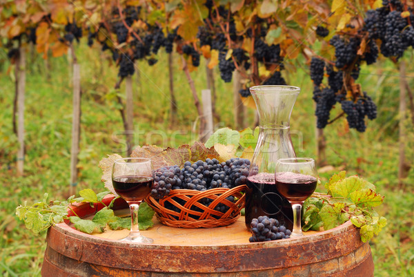 Red wine and grape on wooden barrel in vineyard autumn season Stock photo © goce