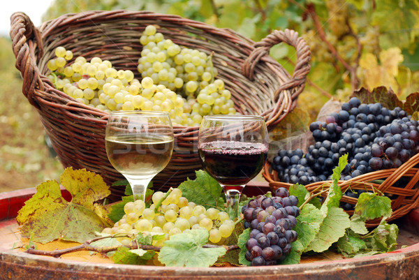 red and white wine with grape autumn season Stock photo © goce