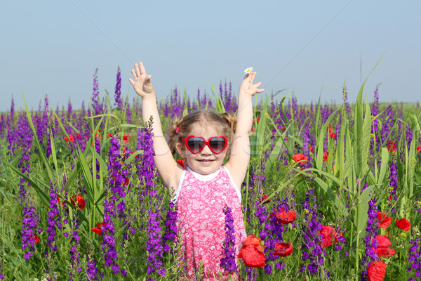 happy little girl standing in colorful meadow Stock photo © goce