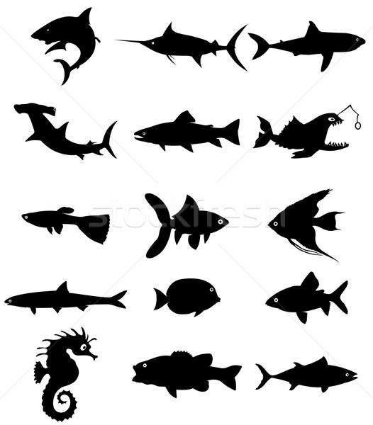 fish silhouette Stock photo © goce