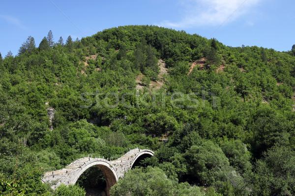 Kalogeriko stone bridge on Vikos gorge Zagoria landscape Stock photo © goce