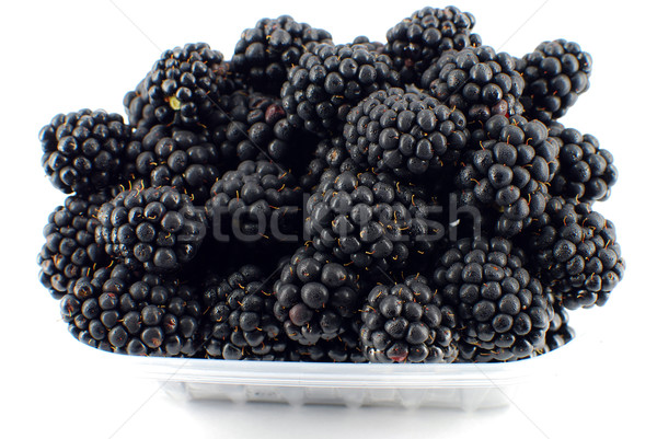 BlackBerry fruits usine dessert sweet régime alimentaire Photo stock © goce