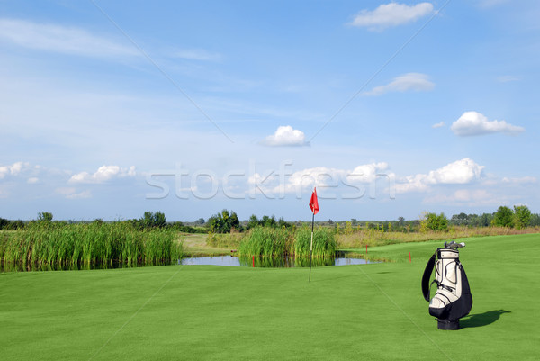 golf field with red flag and bag Stock photo © goce