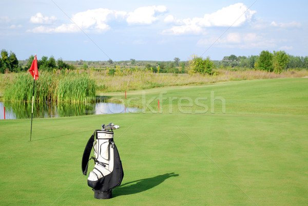 white golf bag on golf course Stock photo © goce