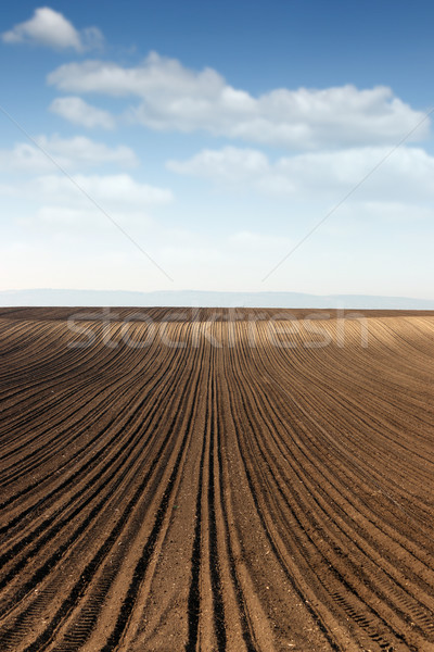 plowed field landscape spring season agriculture Stock photo © goce