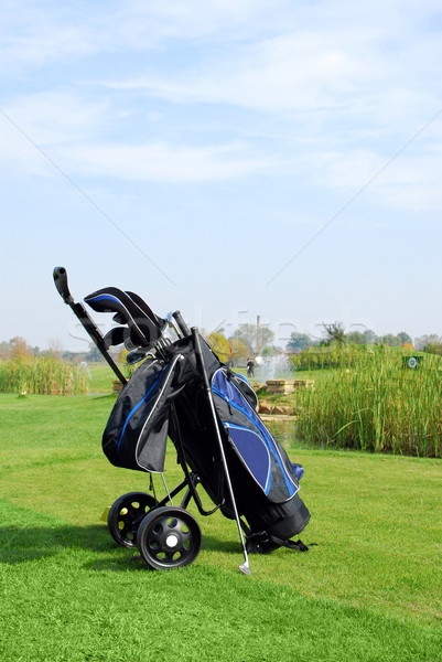 golf scene with bag and golf club Stock photo © goce