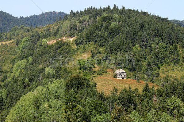 ruined cottage on mountain landscape Stock photo © goce