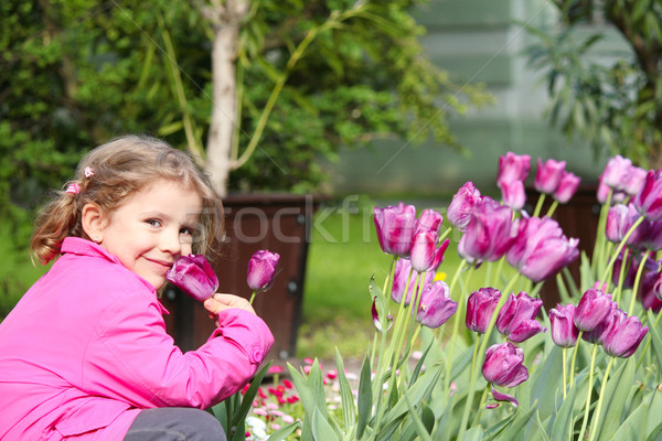 little girl smell tulip flower Stock photo © goce