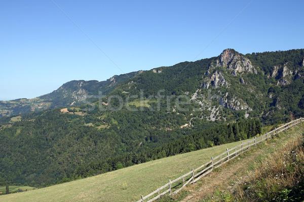 Mountain landscape Serbia summer season Stock photo © goce