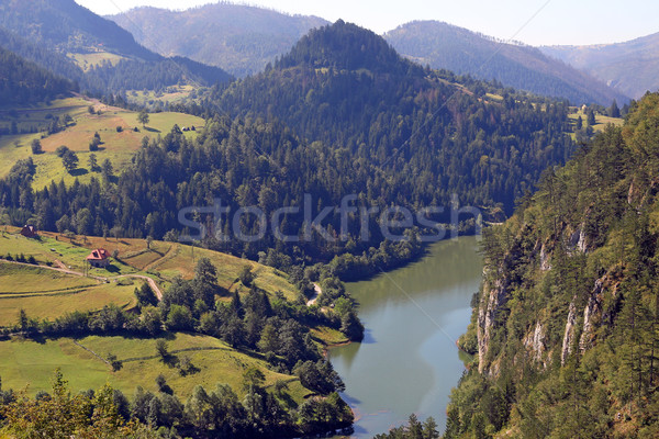 Tara mountain lake nature landscape Stock photo © goce