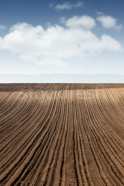 plowed field landscape agriculture industry Stock photo © goce