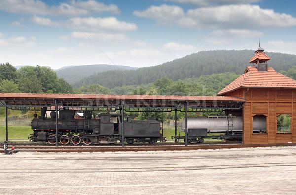 Velho estação de trem floresta trem retro Foto stock © goce