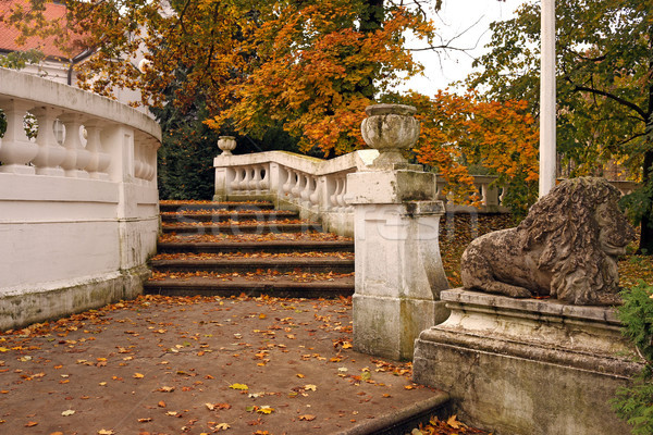 Stone staircase with fallen leaves in park autumn season Stock photo © goce