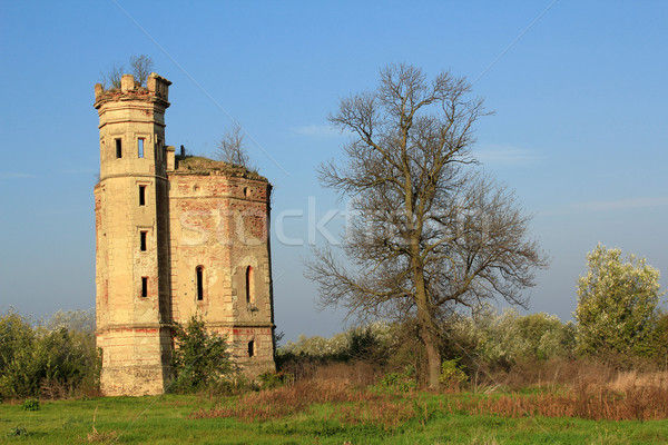 old ruined castle eastern europe Stock photo © goce