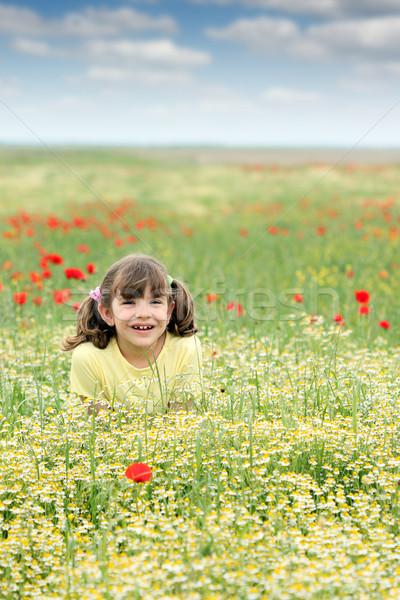 happy little girl on wildflowers meadow spring season Stock photo © goce