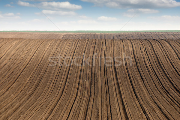 plowed field  country landscape agriculture Stock photo © goce