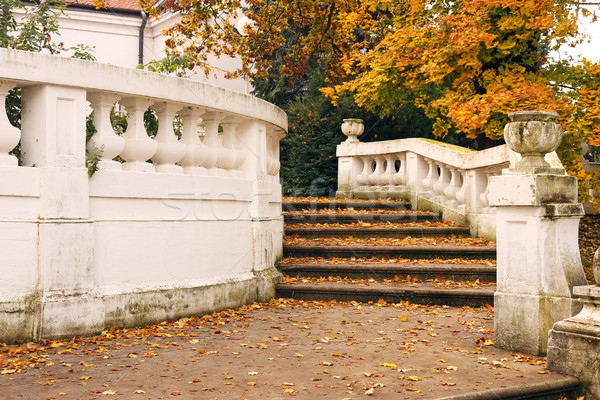 staircase with fallen leaves autumn season Stock photo © goce