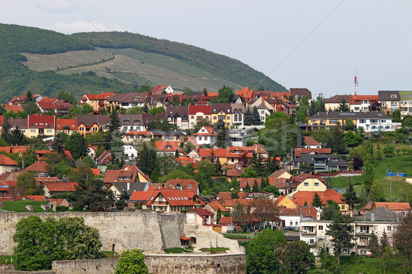 Forteresse maisons colline cityscape bâtiment vert Photo stock © goce
