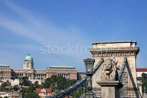 цепь моста королевский замок Будапешт Венгрия Сток-фото © goce