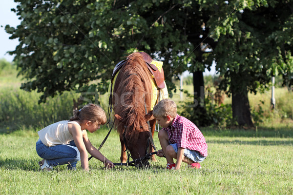 Enfants jouer poney cheval animal fille Photo stock © goce