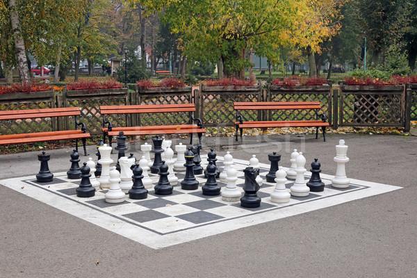échecs parc saison d'automne sport jardin guerre Photo stock © goce
